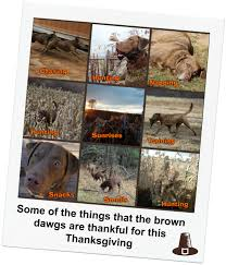 thanksgiving things to be thankful for list this u0027n that thursday thanksgiving edition 2 brown dawgs blog