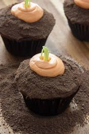 chocolate carrot patch cupcakes baked by rachel