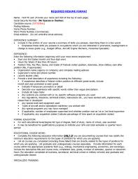 The Best Resume Format For Freshers by Best Resume Template Download