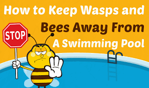 to keep wasps and bees away from a swimming pool
