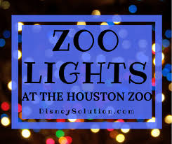 houston zoo lights coupon zoo lights at the houston zoo disney solution