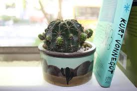Cactus Planter by Desert Cactus Planter U2014 It U0027s Likely Love