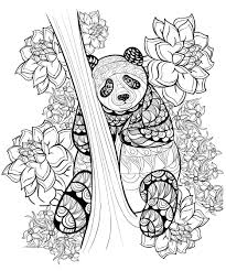 coloring pages animals coloring pages clipart peacock coloring