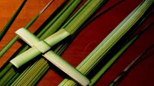 palm branches for palm sunday hobart churches experience shortage of palm branches for palm