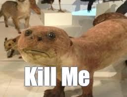 Kill Me Meme - kill me memes