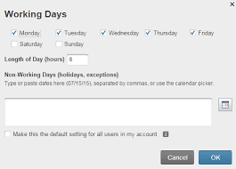 defining working days non working days and holidays on a project
