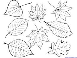 coloring winsome easy leaves draw fall coloring