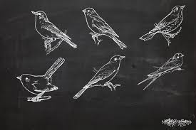 12tribes chalkboard bird sketches and photoshop brushes