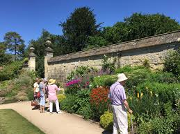 Rock Garden Society by Visit To Oxford Botanic Gardens 5th July Sutton Courtenay Local