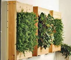 grünpflanzen im schlafzimmer mehr als nur deko 13 kreative ideen für mehr grün in der wohnung