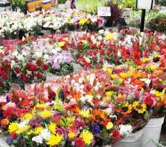 whole sale flowers s wholesale flowers the los angeles flower market