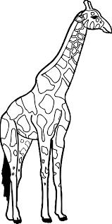 big tall giraffe coloring page wecoloringpage