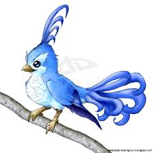cute bird drawing flying wallpapers background