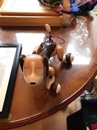 bentley zoomer bentley the robot dog from zoomer in bearsden glasgow gumtree