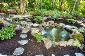 home design backyard landscaping with building a backyard pond