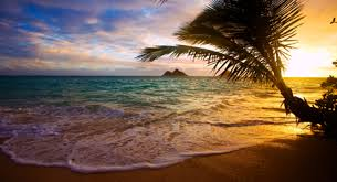 tropical vacations tropical destinations vacation spots flipkey
