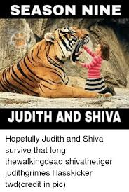 Shiva Meme - season nine judith and shiva hopefully judith and shiva survive that
