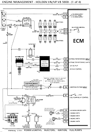 vn v8 wiring diagram vt commodore v6 ecu wiring pinout home