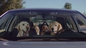 actress in subaru commercial 2016 crosstrek subaru dog tested subaru commercial phone navigation youtube