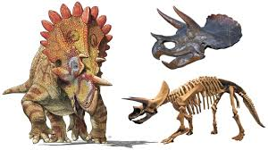 hellboy the dinosaur and the real reason triceratops had horns