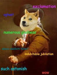 Doge Meme Meaning - doge meme history hillsjohns ga