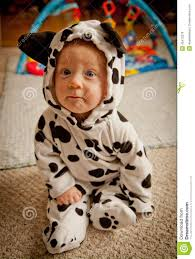 Dalmatian Costume Baby Boy In Dalmatian Costume Stock Photo Image 45472278