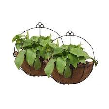 hanging planter basket tosnail pvc coated metal wall hanging planter basket with coco liner