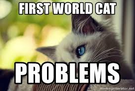 Cheezburger Meme Builder - first world problems meme creator world best of the funny meme