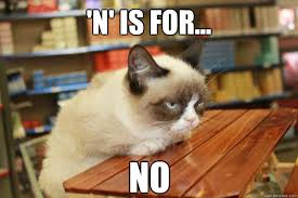 No Meme Cat - angry cat no meme cat best of the funny meme