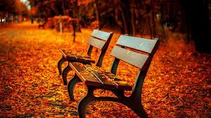fall landscape fall beautiful autumn hd wallpaper