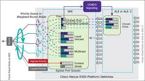 layout nfe cisco nexus 9300 platform buffer and queuing architecture cisco