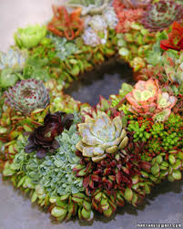 succulent wreath u0026 video martha stewart