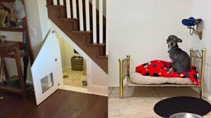chambre pour chien comme harry potter ce chihuahua a sa chambre dans le placard sous
