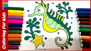 seahorse coloring page how to color seahorse drawing pages for