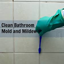 How To Clean Bathroom Fan Clean Bathroom Mold And Mildew