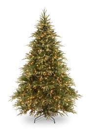7 best noble fir tree images on firs