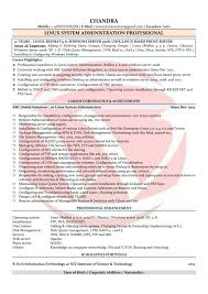 Download Server Administration Sample Resume It Systems