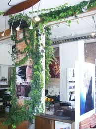 top 3 eco conscious hair salons in toronto