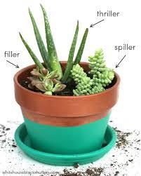 planter for succulents planters for succulents mini succulent planter living wall planter