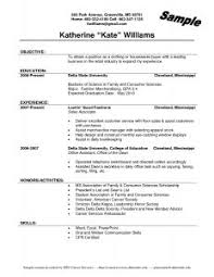 Writing Resume Summary Examples Of Resumes 81 Appealing Basic Resume Samples Simple