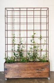Wooden Planter With Trellis 5ft Trellis Planting Trough U003enew Wood Trellis Backed Planter