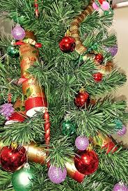 woman finds tiger snake in her christmas tree
