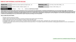 chief internal auditor cover letter u0026 resume