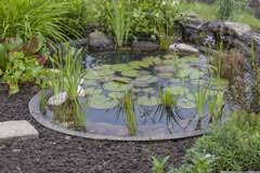 pflegeleichten kiesgarten anlegen anleitung hausgarten net