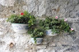 wall flowers wall flowers alittlebitoutoffocus
