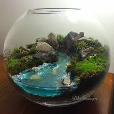mahmut kırnık 1350 terrarium pinterest terraria fairy and