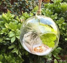 orb terrarium air plant terrarium hanging globe candle holders