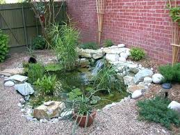 raised fish ponds for small gardens basic look for pond surround