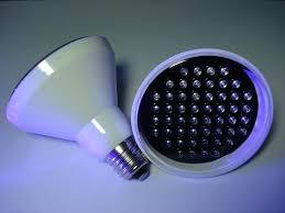 led uv light bulbs led uv light bulb urbia me