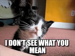 What Do You Mean By Meme - i don t see what you mean sleepy cat meme on memegen
